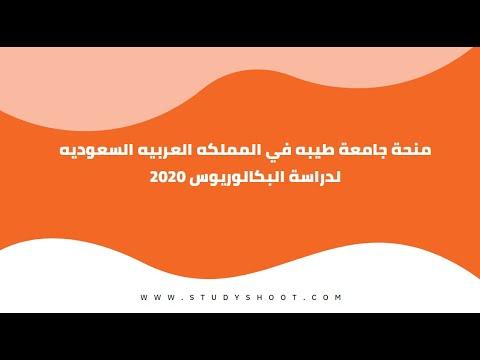 منحة جامعة طيبة في السعودية لغير السعوديين لدراسة البكالوريوس 2021 2022
