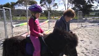 Pony Rides with the kids!