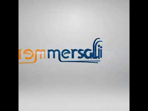 Mersali Air Cargo Leader in Egypt