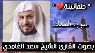 سورة الملك سعد الغامدي