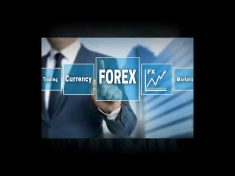 How To Choose Best And Top Forex Brokers