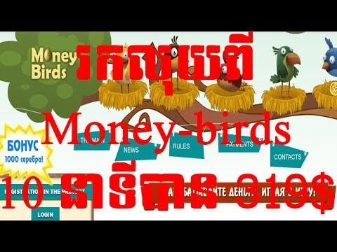 ១០នាទីរកលុយបាន ៣១៩ដុល្លារ ពី Money-birds | 10 minute to make money 319$ of money-birds