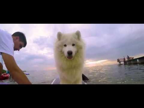 Лучшее видео о Кирилловке!