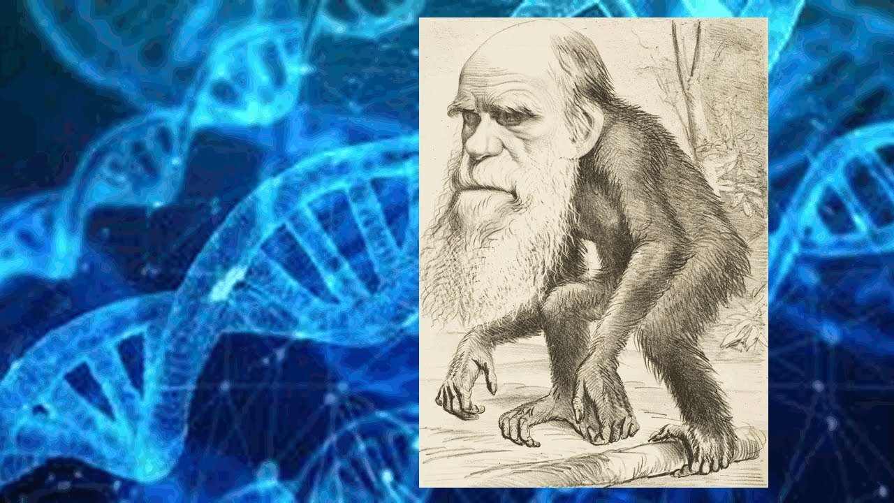 Ep.  41: Darwin Was Wrong.  Pt.  5/? The Second Law of Thermodynamics