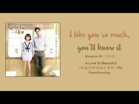 A Love So Beautiful OST 致我们单纯的小美好 OST - I Like So Much, You'll Know It [Rom/Pinyin/Eng] LYRICS