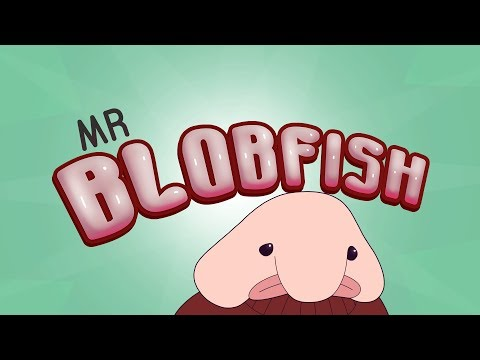 Mr Blobfish