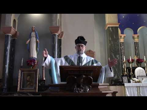 Our Lady of the Miraculous Medal Sermon (November 27, 2020)