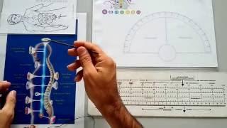 Baixar Radiestesia-Luiz Alves-Diagnóstico de Saúde