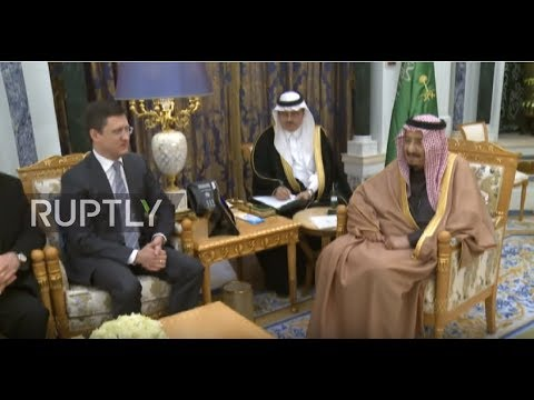Saudi Arabia: Novak, King Salman talk energy cooperation in Riyadh