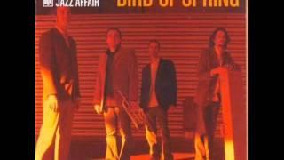 Metropolitan Jazz Affair. Bird of Spring. 02 DRIFTING (Rnb Mix)