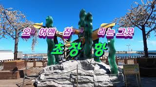 강원도 여행 - 오징어맨손잡기축제가 열리는곳, 속초 장…