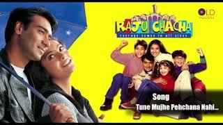 Tune Mujhe Pehchana Nahi - Raju Chacha(2000) HD