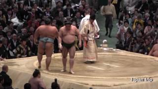 2017大相撲大阪春場所での佐田の海 vs 琴勇輝の取組。