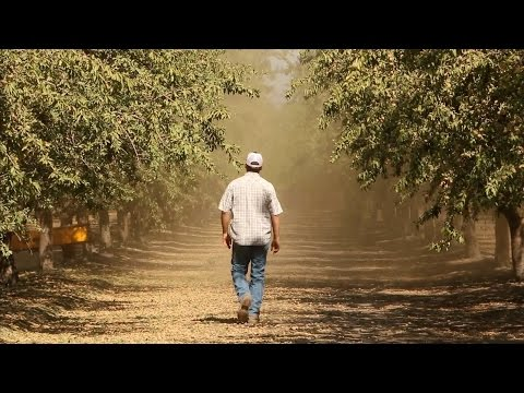 California's Central Valley: 'More Than Just Farmers on Tractors'   KQED News