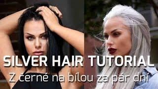 Silver hair tutorial | Z černé na bílou za pár dní | Martina Markova LifeStyle