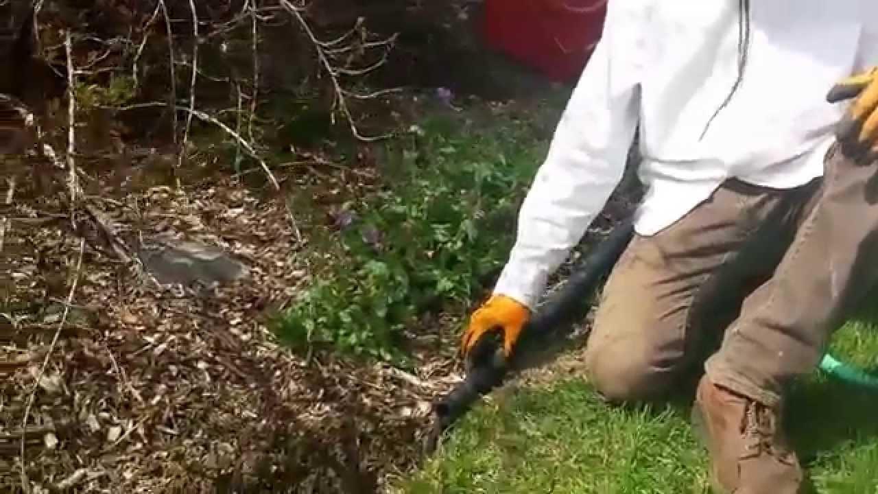 K paysages comment faire une bordure de plate bande for Plante jardin sans entretien