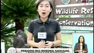 TV Patrol Palawan - September 11, 2014