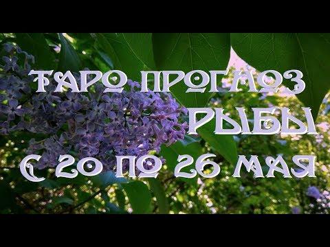 Рыбы. Таро прогноз на неделю с 20 по 26 мая 2019 г. Онлайн гадание.