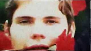 Smashing Pumpkins - Millieu (Gravity Demos) {Fan Video}