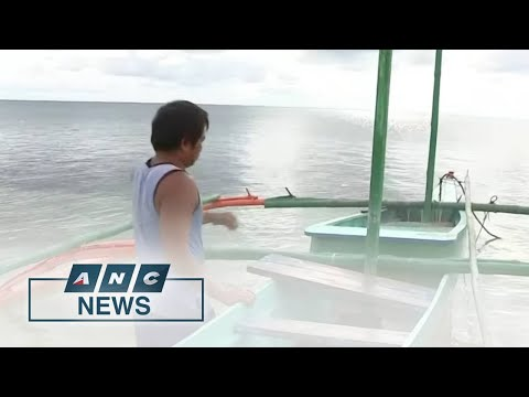 Fishermen in West Philippine Sea town forced to sell catch for low price | ANC