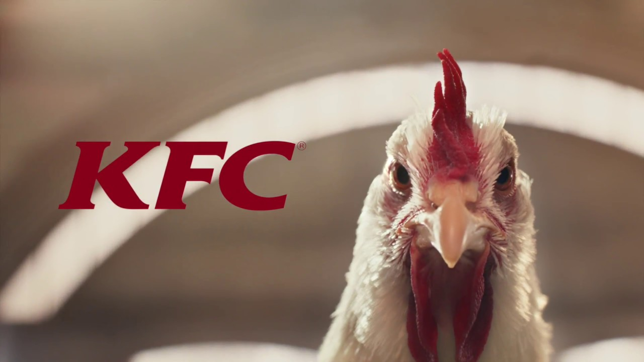 Funny Kfc People: The Whole Chicken