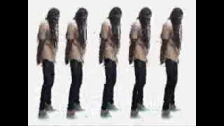 Lil wayne  Scream And Shout Remix,Verse) HD-3D