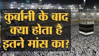 Haj में Qurban होने वाले इतने जानवर कहां से आते हैं और कहां चले जाते हैं | Eid al-Adha | Bakrid