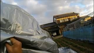 ビニールハウス改造の続きです。テント倉庫用の膜を使いたかったのです...