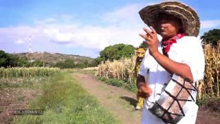 TECUANES ACATLAN DE OSORIO PUEBLA 2014