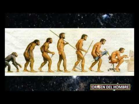 cual es el origen de hombre