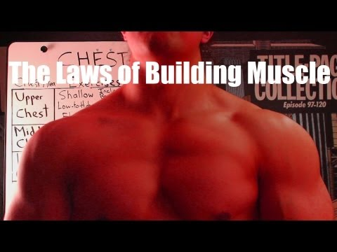 10 Fundamental Laws of Hypertrophy: The Science of Size