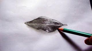 Como Desenhar uma Folha em 3D - (How to Draw 3D Leaf) - ILUSÃO TRIDIMENSIONAL #01