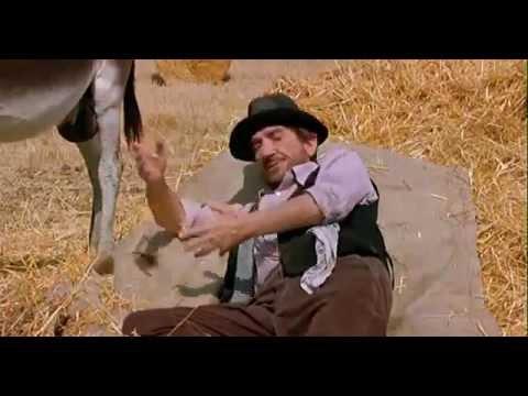 """Funniest """"italian joke"""" - The Donkey"""