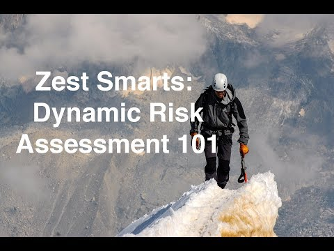 Zest Smarts: Dynamic Risk Assessment 101