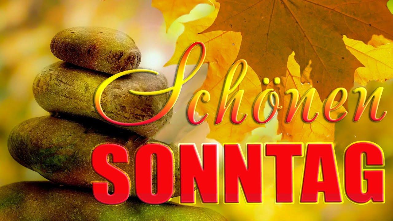 Der Schönste Blätterfall Im Herbstguten Morgen Wünsche Dir Ein Schönen Sonntag