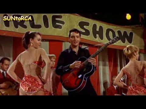 Elvis presley i m a roustabout