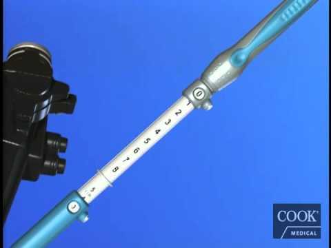 EchoTip® Ultra® Endoscopic Ultrasound Needle Animation