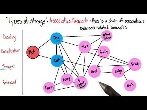 Associative network - Intro to Psychology