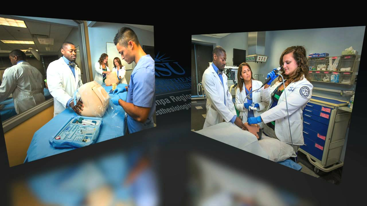 Anesthesiologist Assistant Program Tampa Florida Youtube