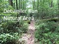 Detweiler Run Natural Area, and my truck leaves me stranded!