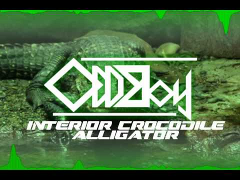interior crocodile alligator oddboy18 remix youtube. Cars Review. Best American Auto & Cars Review