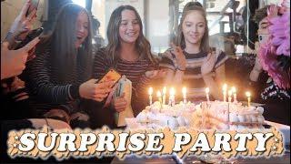 Surprise Party (WK 413.6) | Bratayley