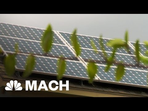 Why Florida Residents Couldn't Use Solar Power After Irma Knocked Out The Power | Mach | NBC News
