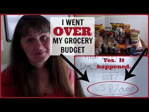 I WENT OVER MY GROCERY BUDGET!!!  Junk Food Reality Check Mp3