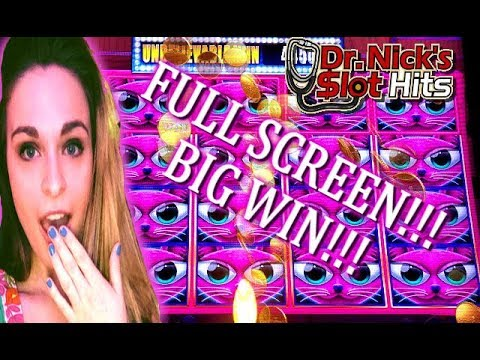 ms kitty Miss kitty is a 5 reel slot from slot manufacturer aristocrat sticky wilds in the bonus feature can lead to some huge wins in this popular slot game.