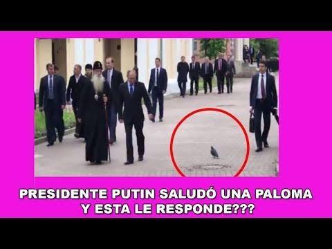 Paloma Saluda a Putin