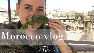 Morocco vlog: Fes