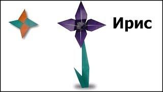 Оригами ирис: видео мастер-класс(Схема сборки: http://origamiizbumagi.ru/tsvety/iris-shema-video По ссылке вы найдете подробную информацию о сборке оригами ириса..., 2013-03-11T20:09:41.000Z)