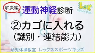 Lex Sports Kids オリジナルDVD教材 小学校受験体操編 【考査はここを見...
