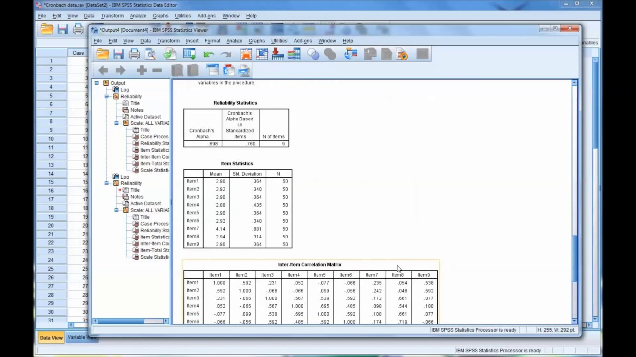 how to work out cronbachs alpha spss